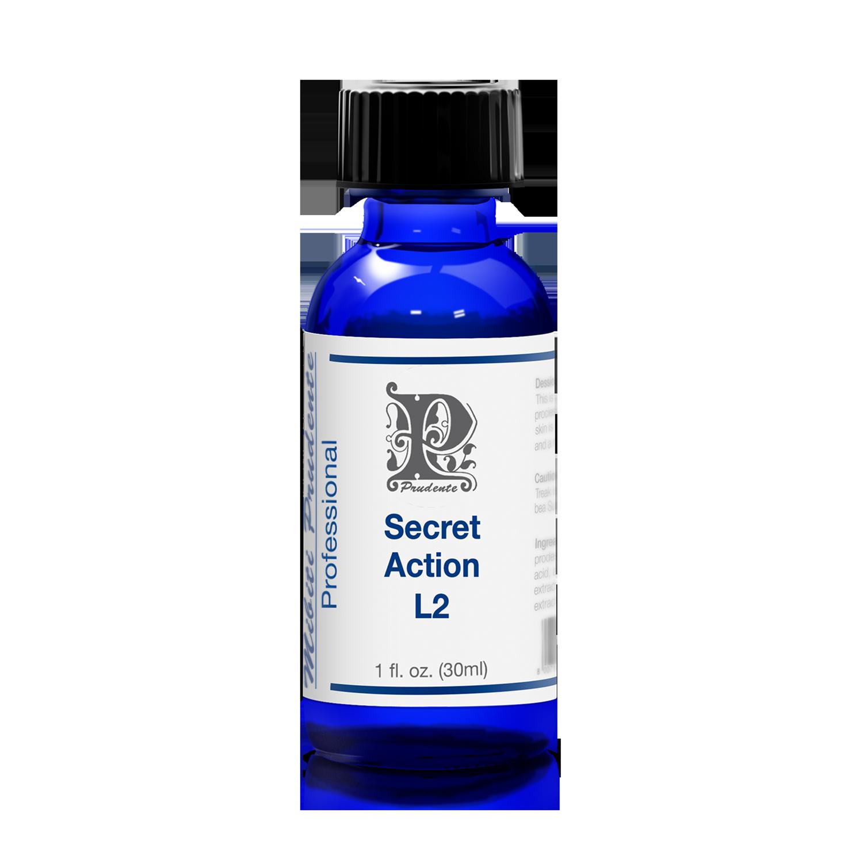 Secret Action L2